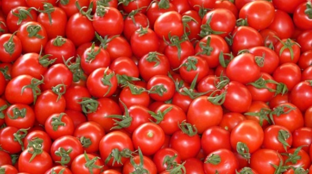 Article image for University of Florida research confirms tomatoes are best out of the fridge