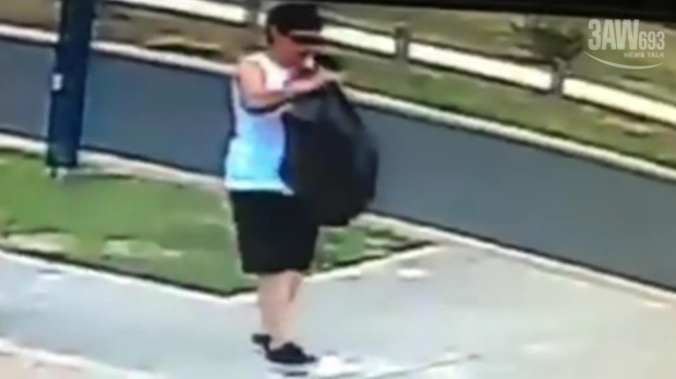 Article image for Woman caught allegedly stealing Christmas decorations from a Taylors Hill home