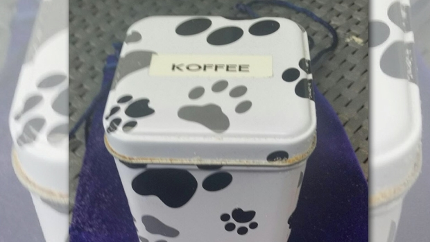 Article image for Hunt for the owners of 'Koffee' the dog after ashes were found at Chelsea beach