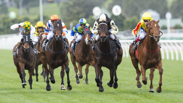 Article image for Racing NSW unveils 'The Everest' horse race worth $10 million