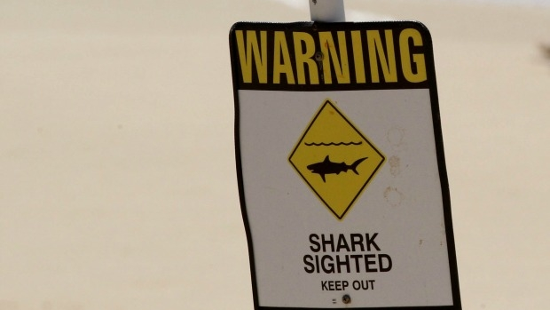 Article image for Shark spotted at St Kilda beach