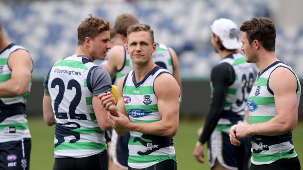 Article image for The TAC won't renew sponsorship with Geelong after Joel Selwood caught speeding