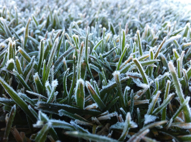 Article image for That's officially the coldest Melbourne has been in seven years