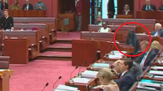Article image for Pauline Hanson again sparks controversy, wears burqa in the Senate