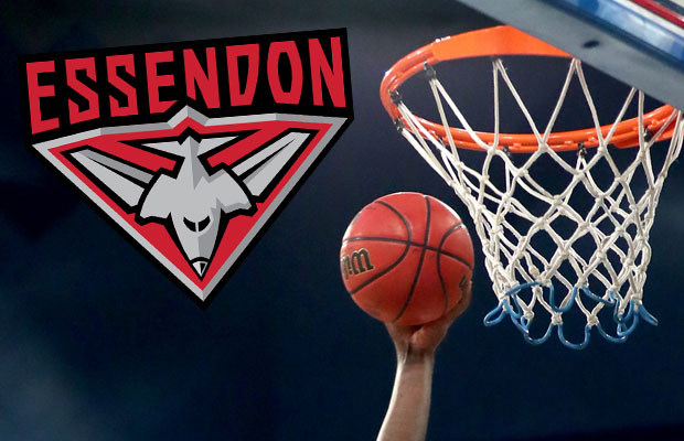 Article image for Essendon pushing for NBL team, linked with big name signing