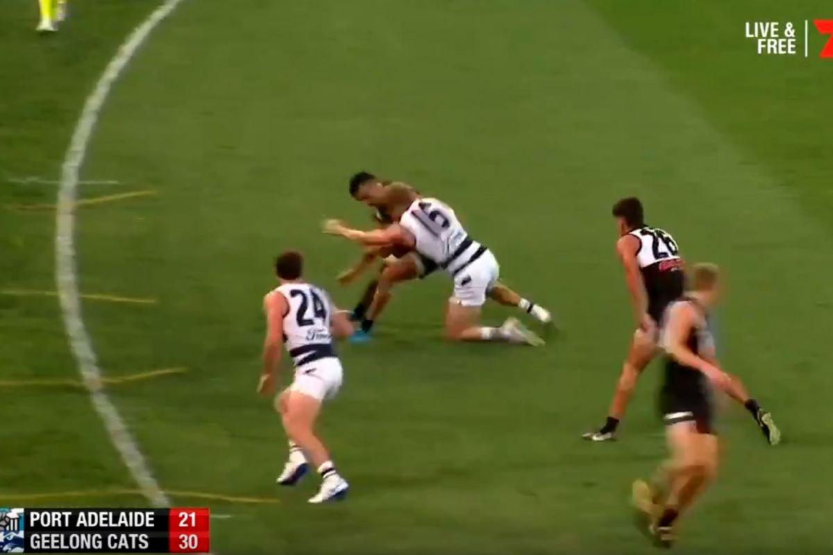 Article image for 'Dog act': Lindsay Thomas blasted over 'gutless' Selwood bump