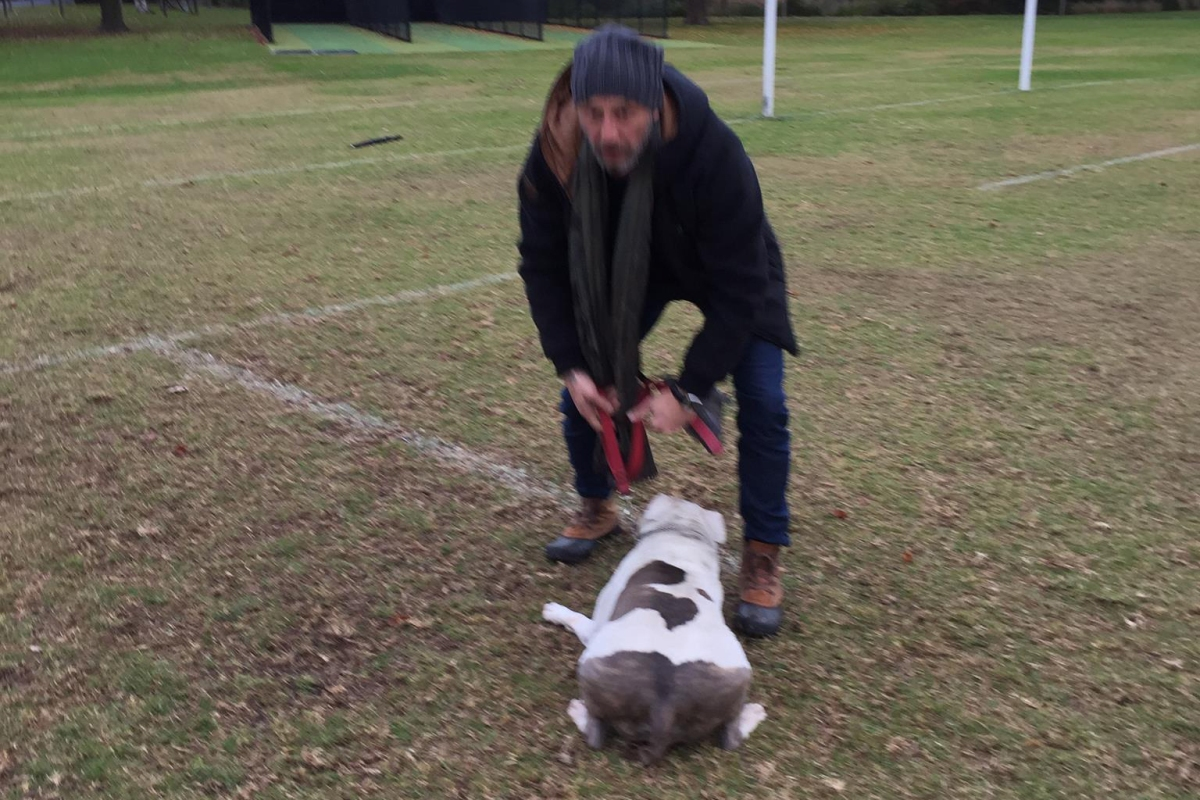 Article image for Police are looking for this man over an incident at a dog park