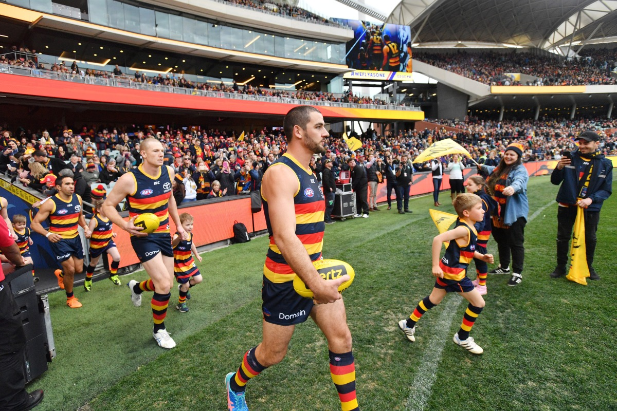 Article image for AFL announces findings into Adelaide pre-season camp