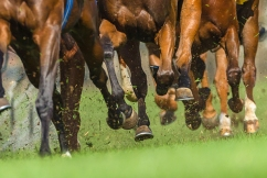 """Racing integrity office """"getting a lot of calls"""" in wake of Darren Weir scandal"""