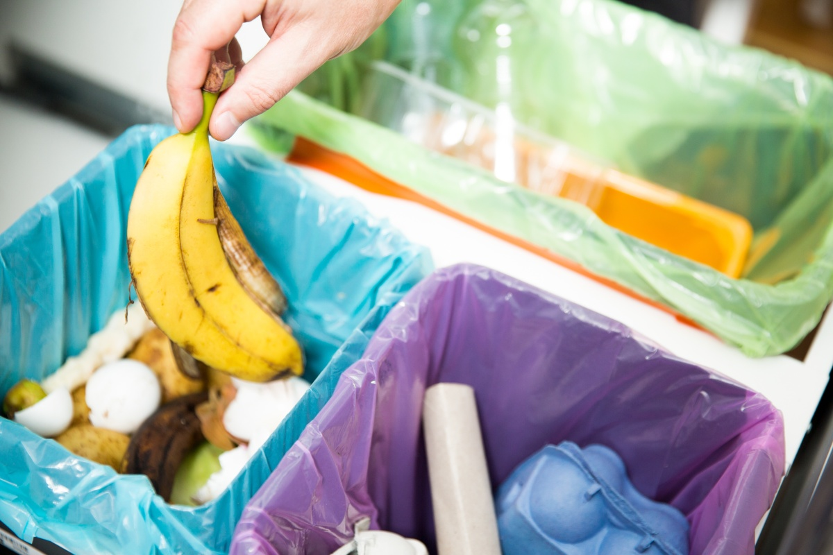 Article image for 'We're moving with the times': Third bin to be trialed in waste reduction bid
