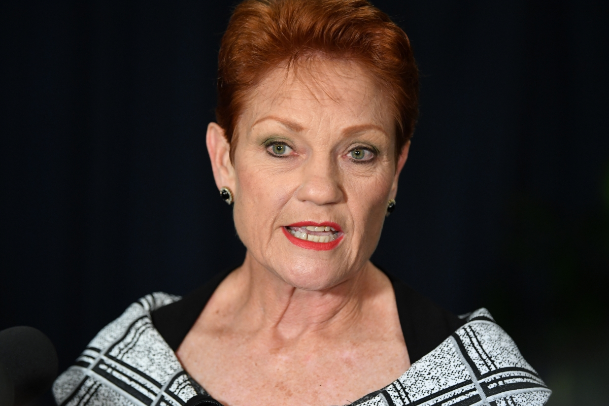 Article image for $158 billion tax cut package in limbo: Will Pauline Hanson or Labor backflip to pass the cuts?