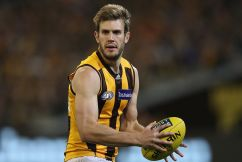 Grant Birchall to make his return for Hawthorn this week!