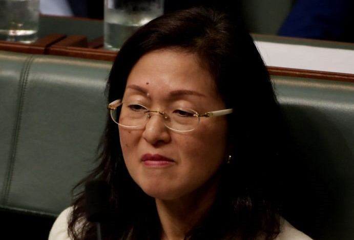 Article image for 'We've been asleep at the wheel': Gladys Liu controversy is a symptom of a much bigger issue