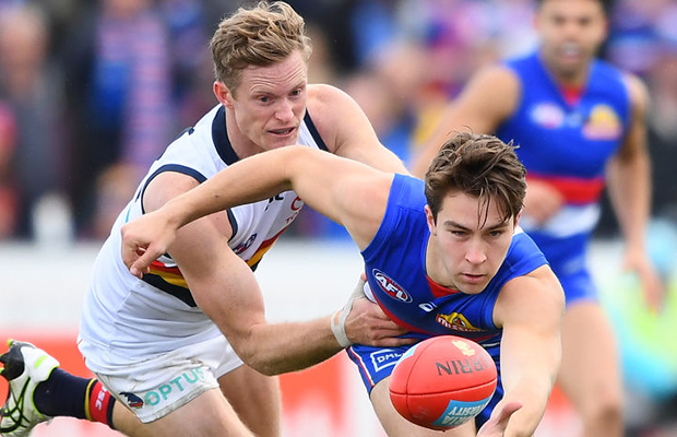 Article image for Adelaide defender requests trade to Western Bulldogs