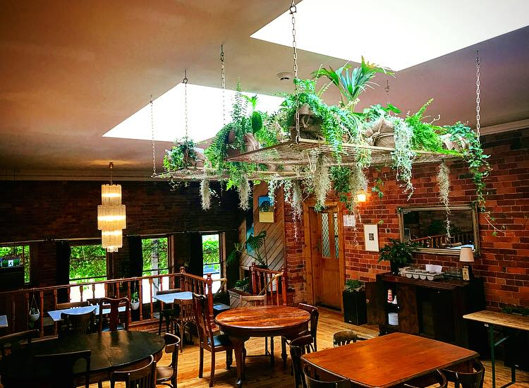 Article image for Pub Of The Week: Tony Leonard reviews the Red Hill Hotel, Chewton