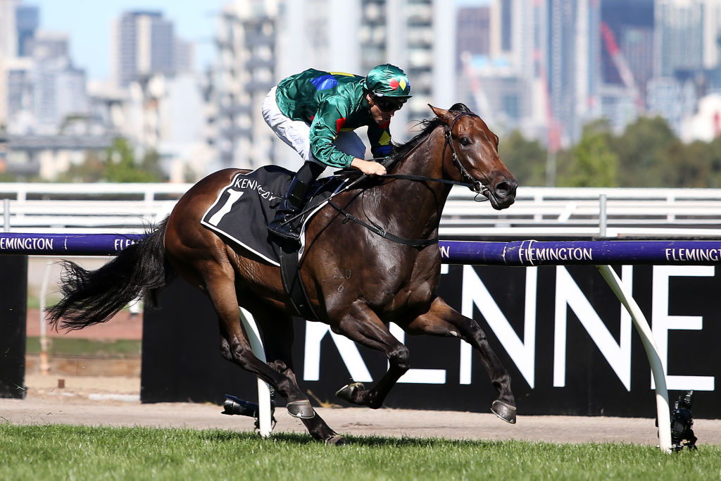 Article image for Star racehorse fails prohibited substance test