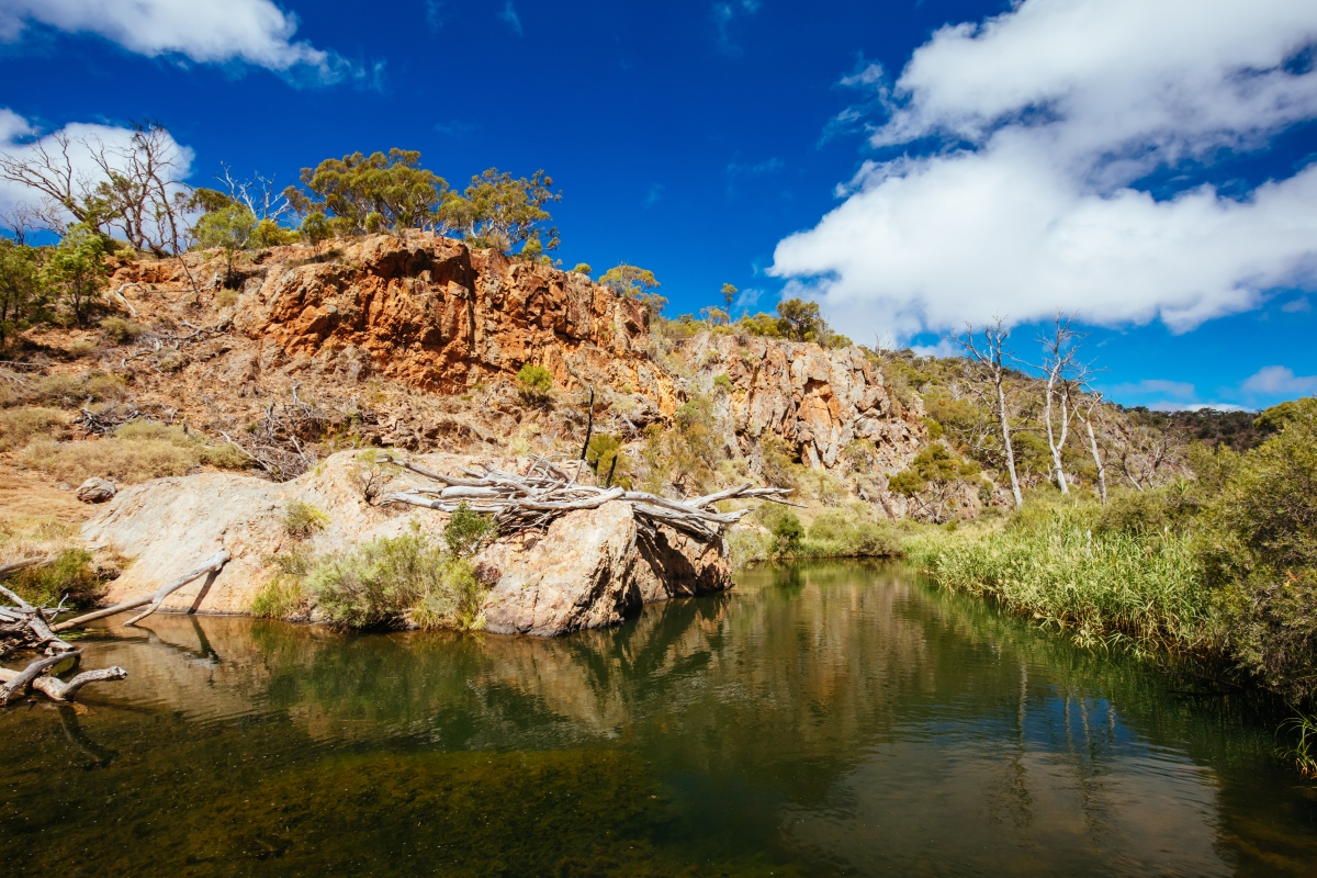Article image for Parks Victoria closes popular national parks in bid to curb COVID-19 spread