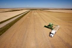 GrainCorp seeks outcome 'more favourable than threat of tariffs'