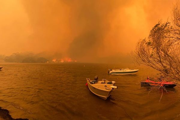 Article image for Why half of the money raised for bushfire victims still hasn't been distributed