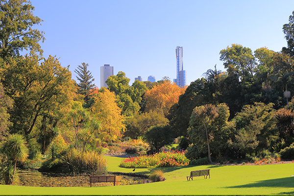 Article image for Get the picnic ready! The Royal Botanic Gardens are reopening