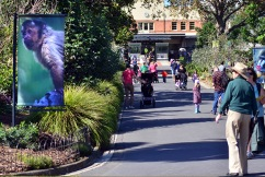Rush on tickets as Melbourne's zoos reopen