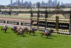 Twilight Payment wins a Melbourne Cup like no other