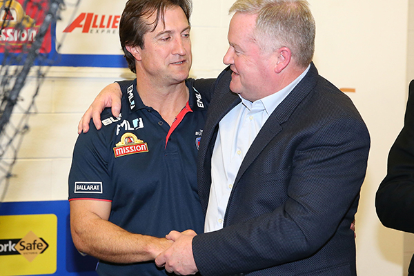 Article image for Peter Gordon steps down as Western Bulldogs president