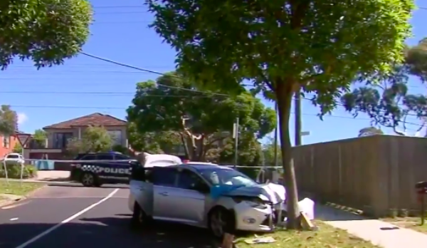 Article image for Wild police chase: Driver allegedly flees after cops struck, injured by car
