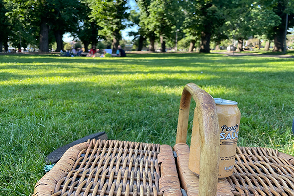 Article image for Tension brewing as council considers Edinburgh Gardens alcohol ban