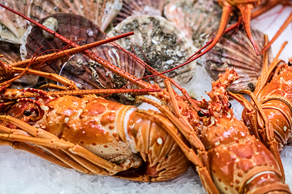 Article image for How cheap crayfish will be this Christmas