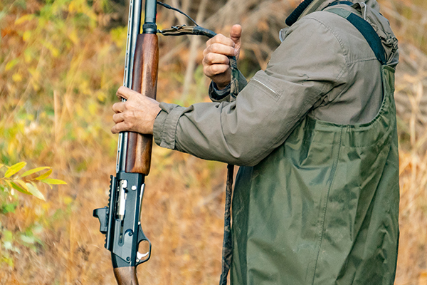 Article image for Victorian duck hunting season gets go ahead, with significant changes