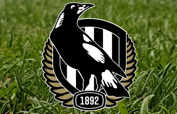 Article image for 'Sorry': Collingwood's playing group releases statement