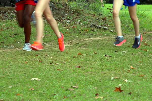 Article image for Council quirk forces school to cancel cross country training due to complaint