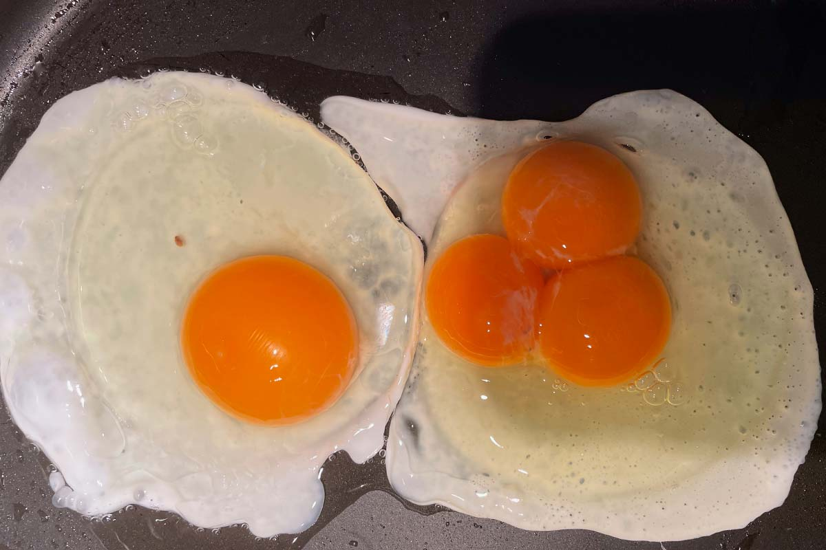 Article image for Two 3AW Mornings listeners came across eggs that are one-in-25 million this week